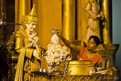 Washing the Buddha 2170