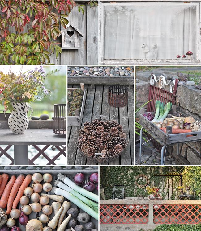 höst i trädgården 1