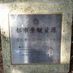 Banyan Tree at Sogenji
