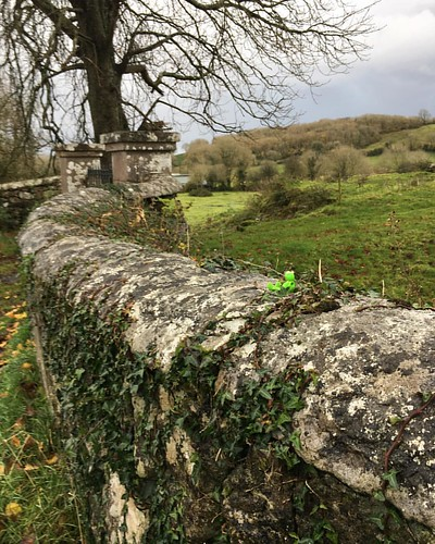 #itainteasybeinggreen #countyclare #abandonedplaces
