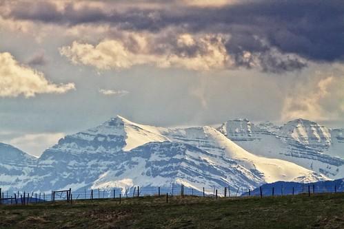foothills mountains fence alberta