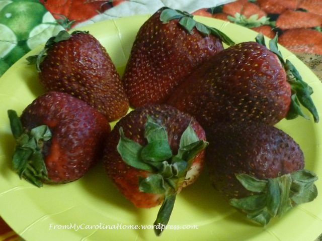 PinicStrawberries