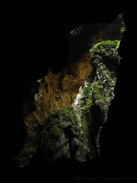 Fairy Cave 04 Down the Rabbit Hole