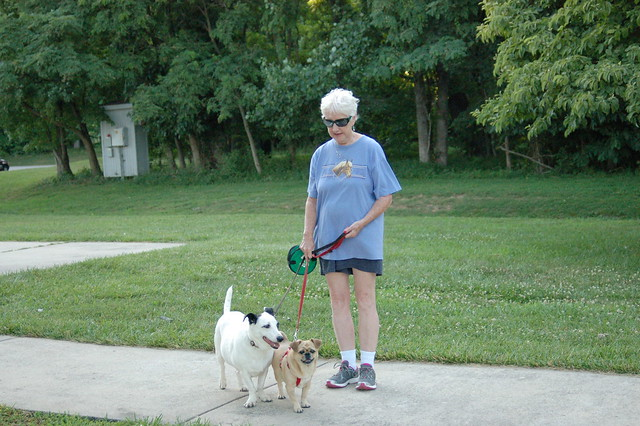 Park guest and her dogs at Leesylvania State Park
