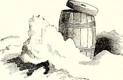 "Image from page 283 of ""Arctic explorations: the second Grinnell expedition in search of Sir John Franklin, 1853, '54, '55"" (1856)"
