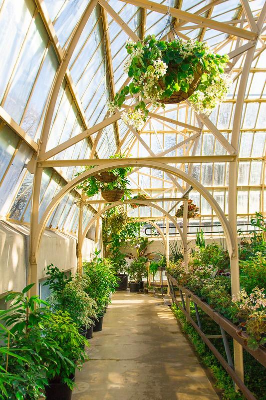 Botanical Conservatory_25