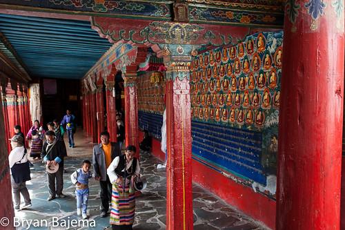 Tibet D6-10-195