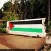 A painting of Palestinian flag in Banda Besar island, the Islands of #Banda, #Maluku, #Indonesia.   #IStandWithPalestine #freeGaza #freePalestine #ICC4Israel