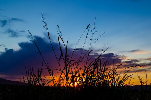 deutschland licht wolken motive sonnenuntergänge gewitter niedersachsen regenwolken hessischoldendorf wetterundjahreszeiten lichtwetterundjahreszeiten