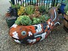 I painted this giant fish pot to look like a koi, then planted it chock-full of succulents.
