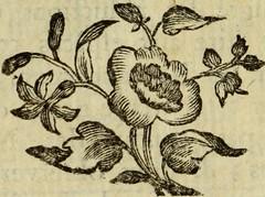 "Image from page 33 of ""Histoire naturelle des oiseaux"" (1780)"