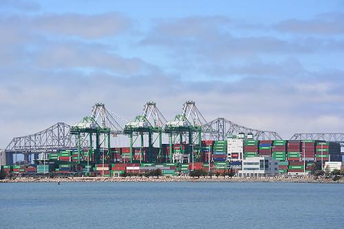 Oakland cranes 1