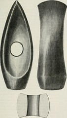"""Image from page 206 of """"The ancient stone implements, weapons, and ornaments, of Great Britain"""" (1872)"""