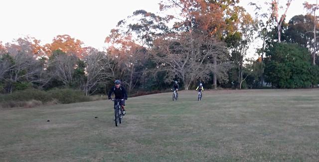 Amcor Cricket Field