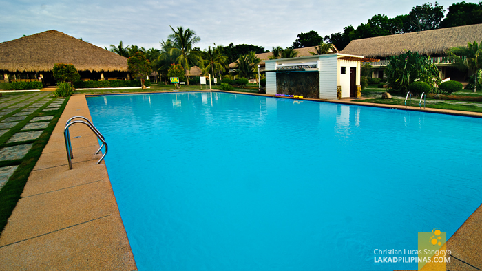 The Swimming Pool at Bohol Beach Club in Panglao