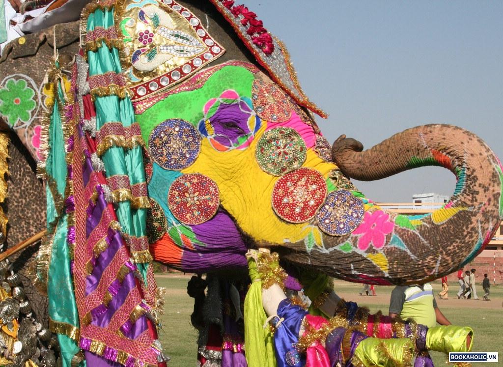 Elephant Festival - Jaipur, India 3