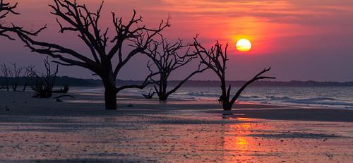 family usa beach landscape unitedstates southcarolina charleston marsh botanybay edisto edistoisland 2014