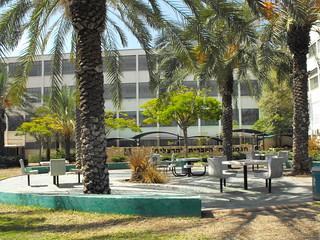 Tel Aviv - a School Yard