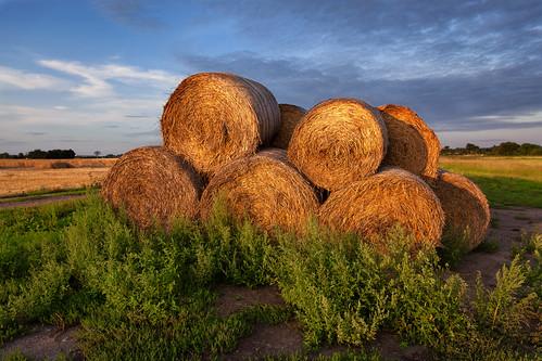 sunset sunlight lund evening countryside cloudy sweden fav20 sverige 24mm goldenhour haybales zweden fav10 canoneos5dmarkii ef2470mmf28liiusm