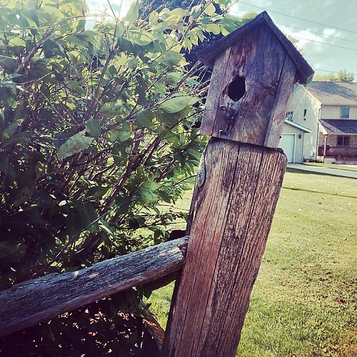 @fence #birdhouse #wood #lynnfriedman
