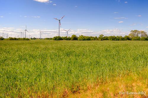 Windpark bei Beelitz/Altmark