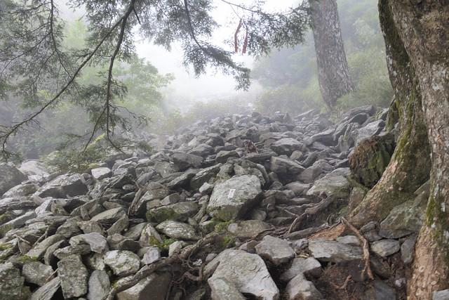 玉山前峰登山步道的碎石坡