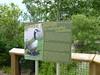 Goose Camp at Toronto Zoo, Ontario, Canada
