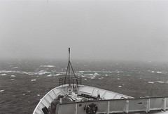 Antarctica Lost Film (3)