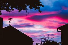 Pink clouds #240/365