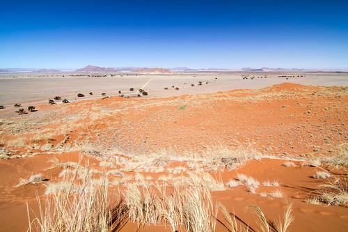 El comienzo del Namib