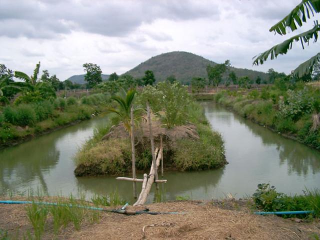 तालाब