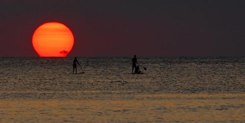 sunset silhouette nikon board omega paddle vase mauritius tamarin etruscan d5100 mauritius100 nikond5100