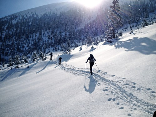Backcountry XC on Fischer Skis