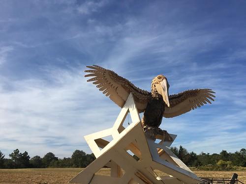 effigy engulf burn pelican