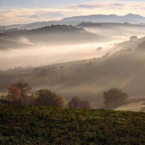 Nebbie per la valle #abruzzo #loves_abruzzo #loves_united_abruzzo #volgoteramo #vivoabruzzo #natura
