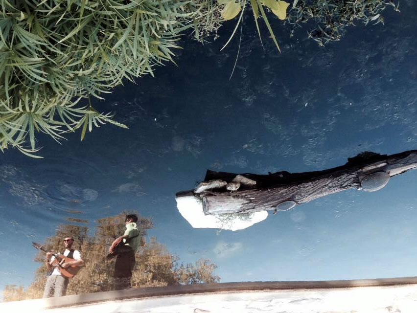 j and ralph w guitars, reflection in turtle pond