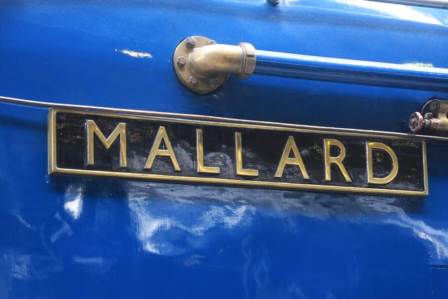 A4 Mallard