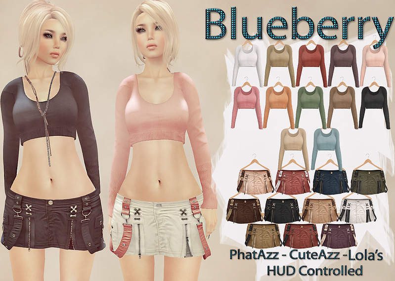 Blueberry Bisquit Crop Top and Strapped Skirts