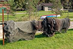 Thiessow - Ortsansichten (02) - Fischernetze