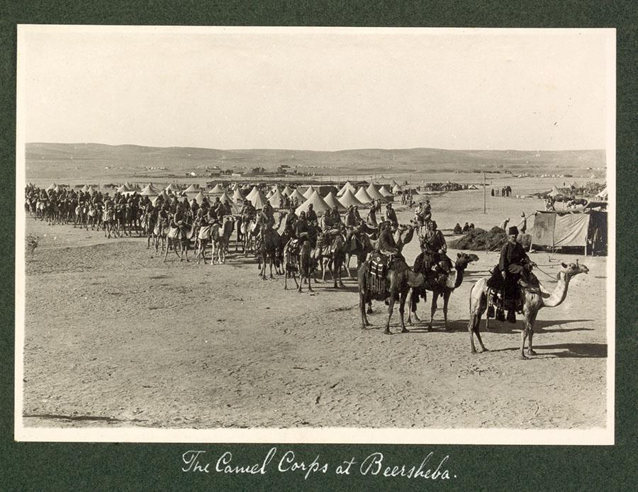 camel-in-war-2