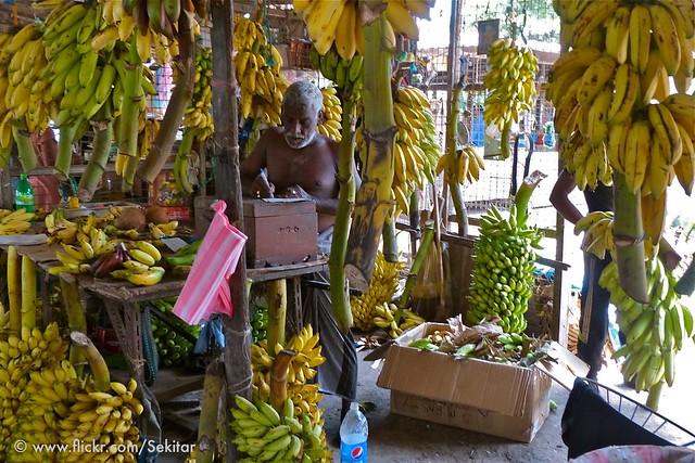 Bananas - bananas! Jaffna Market