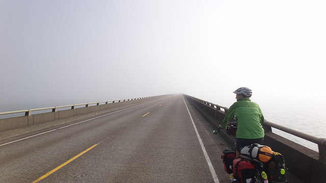 Bridge disappears into the fog