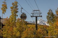 """Town Gondola"" Telluride"