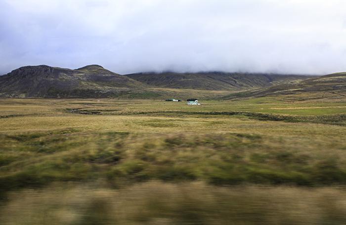 Iceland_Spiegeleule_August2014 131