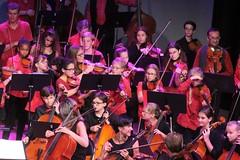 Festislave 2014 : concert d'ouverture 'Les cent violons'