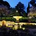 20141023-04-University Rose garden at twilight