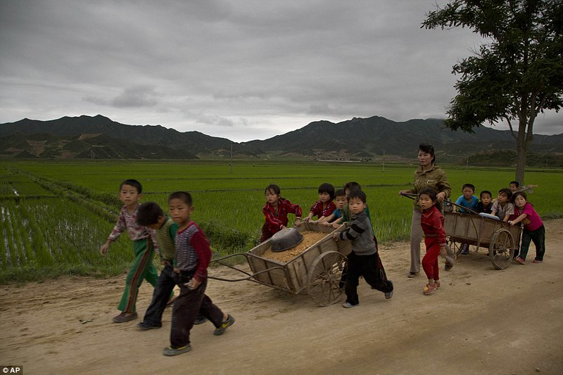 Fixing the road - Child Labor (North Korea, 2014)