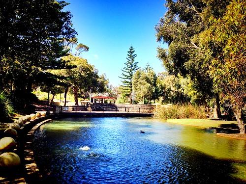 blue sunset sky cloud lake beautiful sunrise amber duck view australia perth wa joondalup photooftheday sunshot lakesidejoondalupshoppingcentre