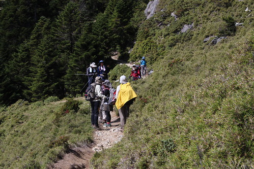 總量管制減少環境負擔以及登山者風險。