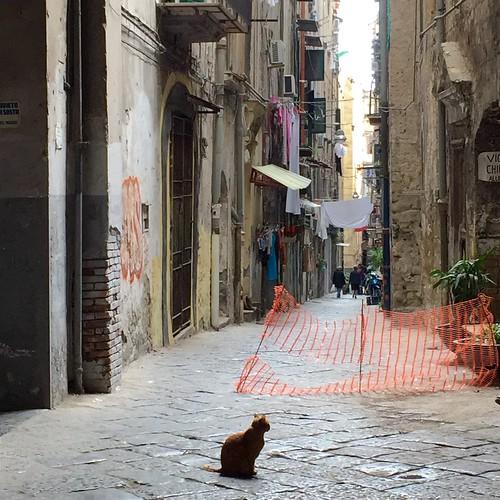 Napoli October 2014